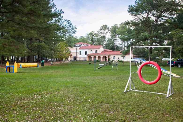 services dog park